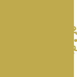 Duurzame Ondernemer Goud 2013
